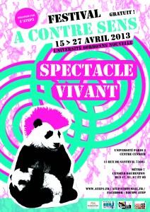 affiche festival ACS13 - A4